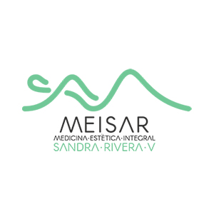 Eleva-Ingeniería-Transporte-Vertical-Clientes-Mesiar